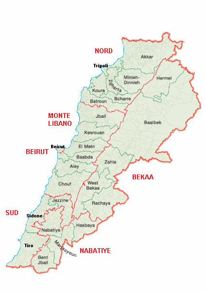 """LIBANO – GIORDANIA –  """"We Are the Future: formazione professionale e inclusione socio-economica di giovani, donne e disabili""""."""