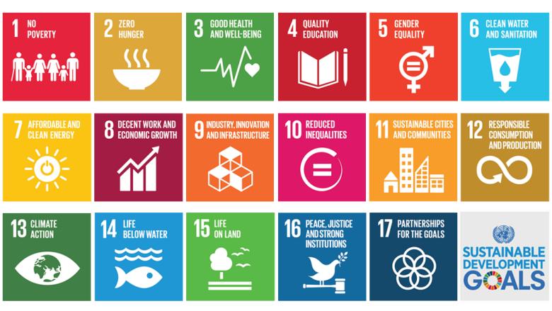 Presentazione primo Rapporto monitoraggio sull'attuazione Agenda 2030 in Italia, di Gcap Italia