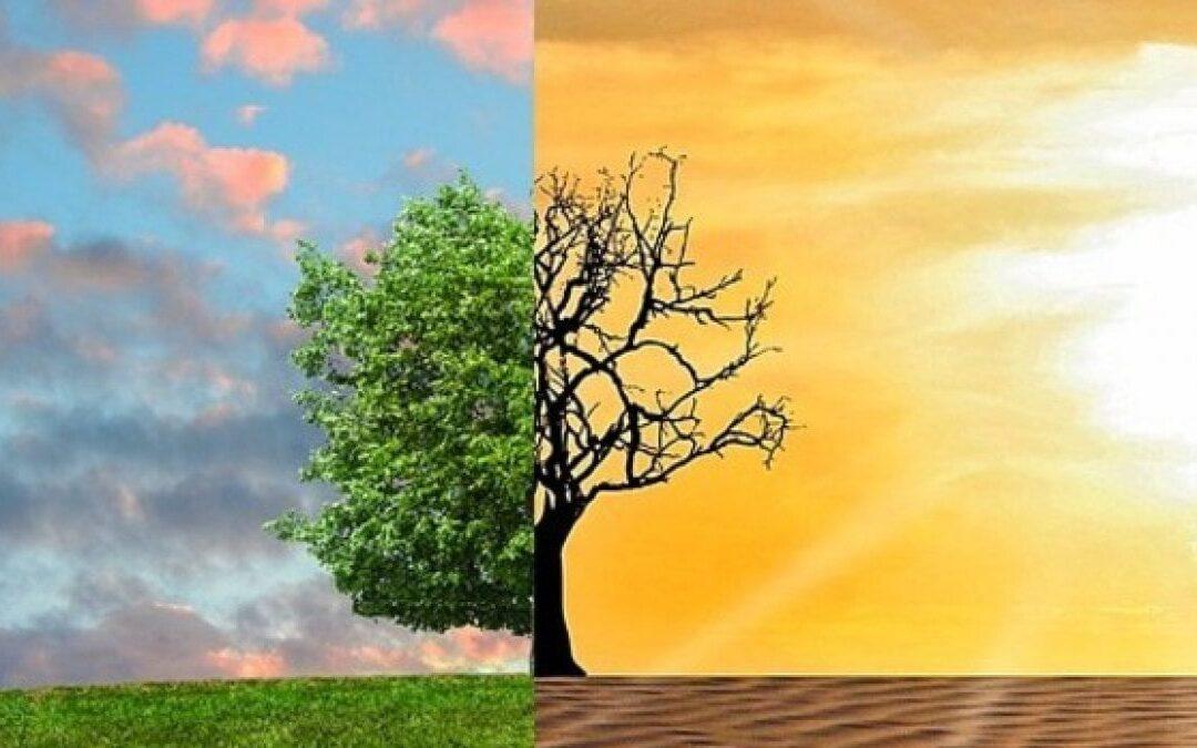 Nuovo rapporto Gcap 2020: affrontare il cambiamento climatico