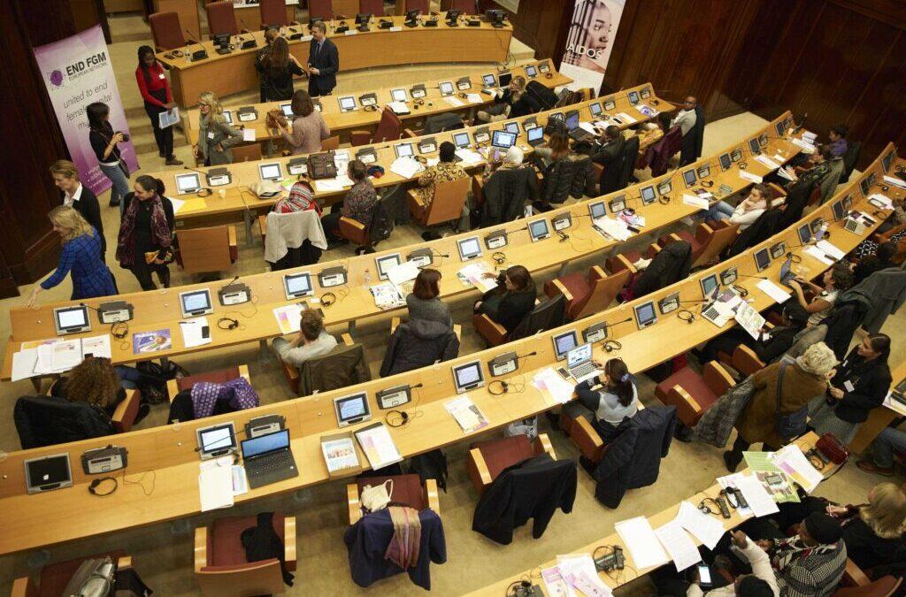 "International Stakeholder Dialogue ""Gender transformative approaches to ending Female Genital Mutilation"""